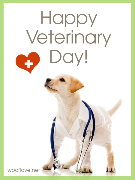 world veterinary day dog lovers blog art dogs design